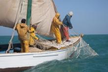 """اكتتاب جديد لصالح """"خفر السواحل"""" الموريتانية ـ تفاصيل الملف"""