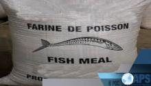 داكار تحتضن منتدى إقليميا حول الصيد البحري في غرب أفريقيا